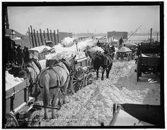 Snow carts at the river, 1899