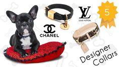 Luxury Designer Dog Collars and Accessories - Check the top 5 designer dog collars and accessories (Louis Vuitton, Gucci, Prada, Chanel, Burberry)