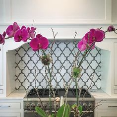 These beautiful orchids pop in front of our client's newly installed kitchen backsplash. #courtneygilesinteriors #orchids #kitchenrenovation #walkerzanger #whitedove