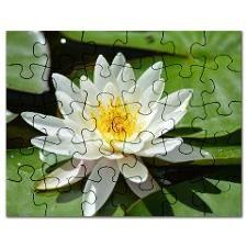 White Lotus Flower Puzzle