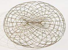 Dmitri Kozlov   Mathematical Art Galleries