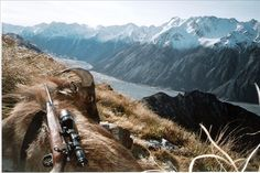 This hunt is for a Free Range, Himalayan Tahr in the magnificent mountains of New Zealand. Mar to Sept, Hunt price includes + accommodation,food and beverages. Red Stag Hunting, Trophy Hunting, Next Holiday, Rifle Scope, Amazing Adventures, Travel Information, Vacation Spots, New Zealand, Tourism