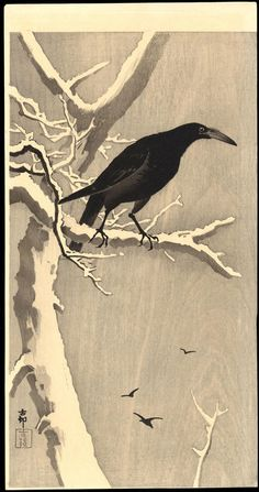 crow tattoo - Buscar con Google