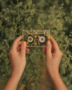 Glass Wipes – Diy … - Types of Photography Art Hoe Aesthetic, Flower Aesthetic, Summer Aesthetic, Aesthetic Vintage, Aesthetic Photo, Aesthetic Pictures, Aesthetic Collage, Photography Aesthetic, Art Photography