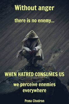 """Without anger there is no enemy...when hatred consumes us, we perceive enemies everywhere."" ~ Pema Chodron"