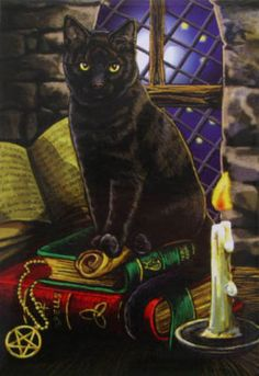 Black Cat on Books by Lisa Parker