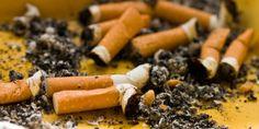 """Três estudantes da Escola Técnica Estadual de Heliópolis desenvolveram um projeto para reutilizar cerca de 30 milhões bitucas de cigarros descartadas por dia na capital. Chamada """"Sementuca"""", a iniciativa transforma os resíduos em folhas de papel semente."""