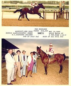 Danzig - In many ways it was the incredible success of Danzig (Pas de Nom, by Admiral's Voyage) that put the seal on Northern Dancer's reputation as a sire of sires. Although undefeated in three sprints at two and three, Danzig never contested a stakes race and got his opportunity at Claiborne Farm largely through the connection of his trainer, Woody Stephens, to the Hancock family, owner of Claiborne.