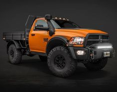 Serious off-road gen single cab flatbed Ram Truck Flatbeds, Truck Mods, Ram Trucks, Dodge Trucks, Diesel Trucks, Cool Trucks, Pickup Trucks, Dodge Ram Diesel, American Expedition Vehicles