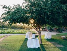 Because when it comes to finding a unique space for your Big Day, it doesn't get any better than a 10-acre floral farm blooming with romance. Mag & B Photography. Florals   Florenta Design
