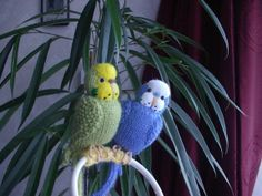 knitted budgies,rehomed on ebay