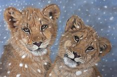 Snowy lions in pastel by Sarahharas07.deviantart.com on @deviantART