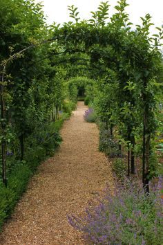 Landscape Elements, Landscape Designs, Contemporary Gardens, Garden  Cottage, Garden Structures, Landscaping Ideas, Garden Landscaping, Gardening  Tips, ...
