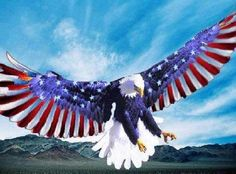 American EagLe FLag Wings Cross Stitch Pattern***L@@K***