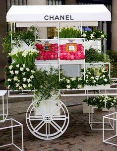 Chanel #roses #designer #girly