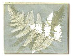 Linda Wilcox Sedgley - Monotype Print