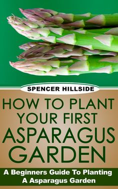 FREE ebook: How To Plant Your First Asparagus Garden.