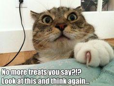 No more treats you say?!? Look at this and think again...