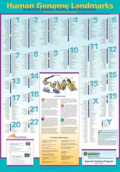 Human Genome Landmarks: Selected Genes, Traits, and Disorders