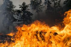 Wildfires in the West - Wildfires in the West - Pictures - CBS News