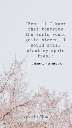 """""""Even if I knew that tomorrow the world would go to pieces, I would still plant my apple tree."""" Learning about the environment and shifting your lifestyle can be overwhelming, especially when you're starting out. This is where a great environmental quote comes in! #sustainability #environmental #zerowaste #lifestyle #plasticfree #earth What You Can Do, Make You Feel, How Are You Feeling, Apple Quotes, Tree Quotes, Plants Quotes, Go For It Quotes, World Quotes, Journey Quotes"""