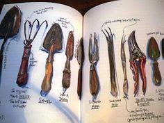 kate campbell's garden journal