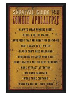 Zombie Apocalypse Survival Guide - Gilt Home... for landon
