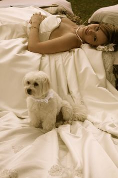 Dog sitting on wedding dress! or maybe on the train of the dress?