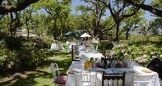 Tea Under The Trees is an idyllic tea garden where guests can enjoy scrumptious light meals and tea fit for a queen. Picnic Spot, Outdoor Furniture Sets, Outdoor Decor, Queen, New Adventures, Light Recipes, Cape Town, Good To Know, Seaside