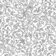 Cole & Son 86/10035 Wallpaper by Vivienne Westwood Vivienne Westwood often looks to history and art as a source of creativity and the Elizabethan style design Insects was inspired by the wardrobe of Elizabeth I. Featuring butterflies, bugs and insects on a creeping vine of berries and leaves, this wallpaper design is available in simple colourings including white with black, green with mica, bronze on brown and charcoal on burnt orange.
