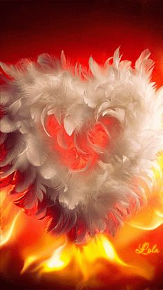 Feathered heart - gif .. Awesome