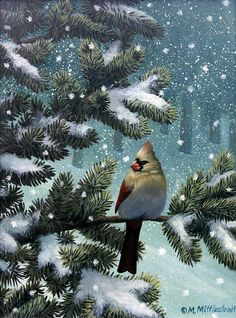 Female Cardinal by Mark Mittlesteadt Happy Bird Day, Snow And Ice, Winter Art, Christmas Animals, Bird Art, Picture Wall, Beautiful Birds, Pet Birds, Winter Wonderland
