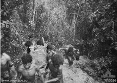 Papuan carriers evacuate Australian casualties on 30 August 1942