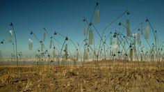 Animitas est la plus récente des grandes installations en plein air du sculpteur…