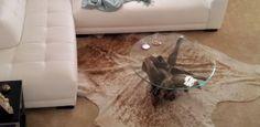 bords trä-low-float-glas-mat-hud-odjuret-vinkel-vita soffan