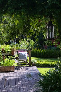 Brilliant Backyard Landscaping Ideas, Big and Small Curb appeal Garden shrubs Dream home Home sweet home Tropical gardens Dream house A Hill Steps Outdoor Retreat, Outdoor Rooms, Outdoor Living, Back Gardens, Outdoor Gardens, House Gardens, Dream Garden, Home And Garden, Cottage Garden Design