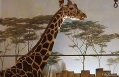 Giraffe tries to eat leaves off tree on the wall http://ift.tt/2of85UN