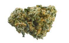 Buy Marijuana Online I Buy Weed and Cannabis Oil Online Cannabis Oil, Buy Edibles Online, Buy Weed Online, Weed Shop, Weed Edibles, Seeds For Sale, Shops, Medical Marijuana