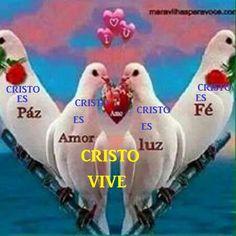 CRISTO VIVE (@CRISTOVIVE709) | Twitter