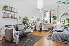 Here are 3 lovely apartments of real plant lovers.