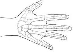 Resultado de imagen para dibujo mano para pintar Skeleton, Poses, Tattoos, Drawings, Manual, Bts, Google, Ideas For Drawing, Model