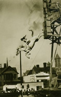 Sonora Webster Carver diving with her horse, Lightning.