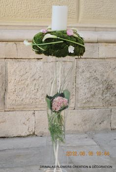 Γάμος :: Γάμοι new !!!(more) :: ΓΑΜΟΣ Αγ.Νικόλαο 2012 :: ΓΑΜΟΣ - Γάμος|λουλούδια|γαμου Plants, Plant, Planets