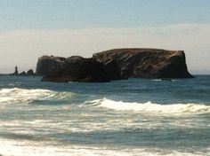 Sun shining in Bandon Oregon! A new experience for me. An emotional day reminiscing about the past.