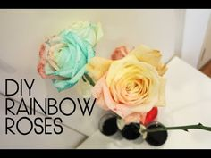 Have you seen a rainbow rose? Learn this stunning diy fun science experiment. How to make rainbow roses. It's a real rose, grown to produce petals in rainbow colors.