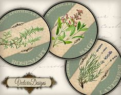 30 Round Herbal Labels 2 inch instant download by VectoriaDesigns, $3.95