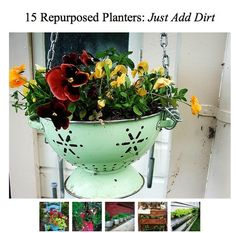 Just add dirt           houseplants and hanging baskets outside
