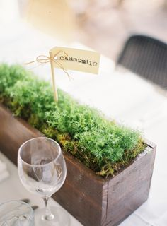 Herb table centrepieces