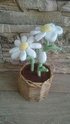 Wicker Baskets, Crochet, Plants, Home Decor, Decoration Home, Room Decor, Ganchillo, Plant, Crocheting