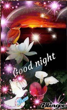 I wish you a good short night You are in the right place about imagenes GIF Here we offer you the most beautiful pictures about the GIF kpop you are looking for. When you examine the I wish you a good Good Night Prayer, Good Night Blessings, Good Night Gif, Good Night Greetings, Good Night Wishes, Good Night Sweet Dreams, Funny Good Night Quotes, Good Night Messages, Beautiful Good Night Images